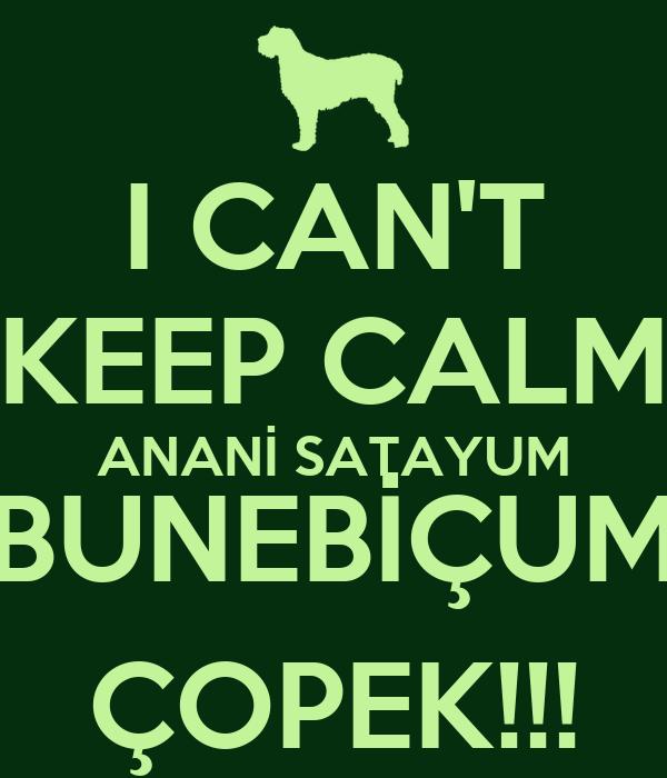 I CAN'T KEEP CALM ANANİ SATAYUM BUNEBİÇUM ÇOPEK!!!