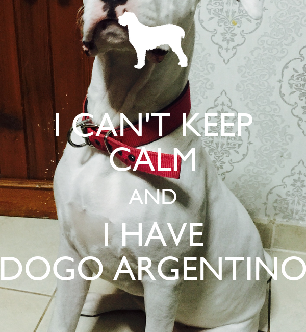 I CAN'T KEEP CALM AND I HAVE DOGO ARGENTINO