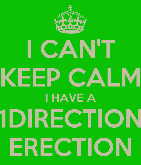 I CAN'T  KEEP CALM  I HAVE A 1DIRECTION ERECTION