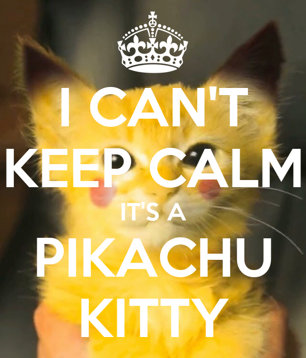 i can t keep calm it s a pikachu kitty poster reconcs980 keep
