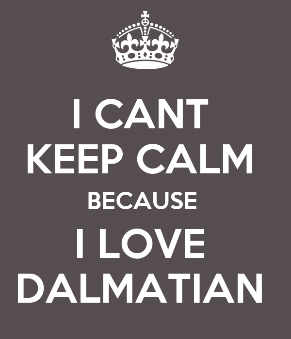 I CANT  KEEP CALM  BECAUSE  I LOVE  DALMATIAN