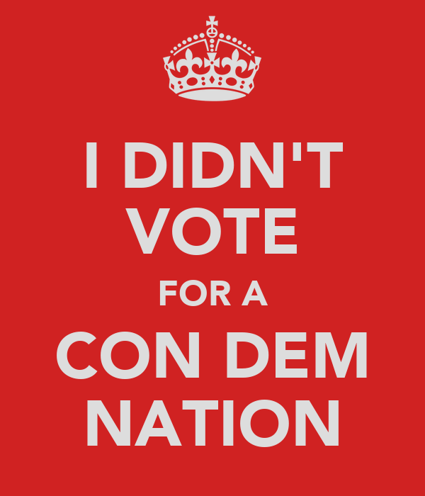 I DIDN'T VOTE FOR A CON DEM NATION