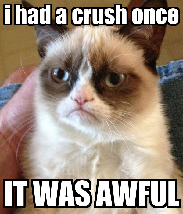 i had a crush once IT WAS AWFUL