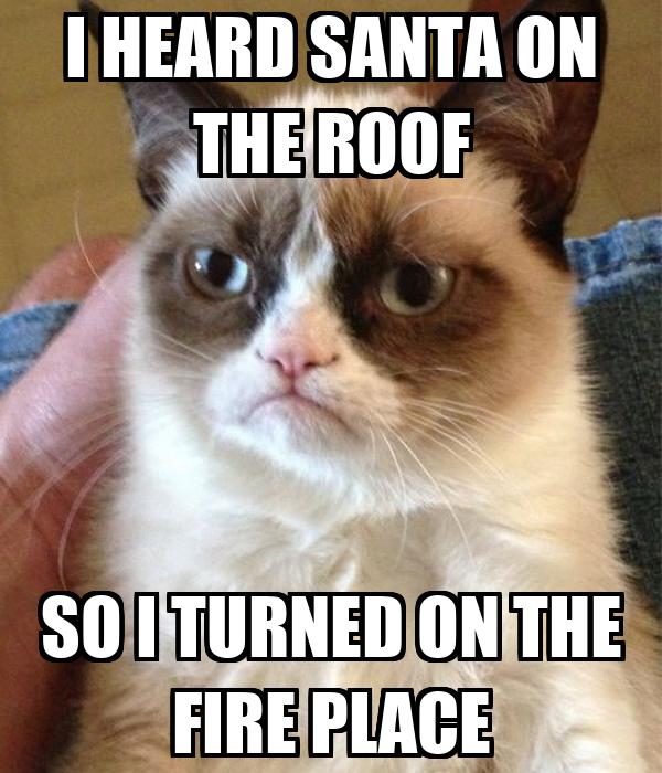 I HEARD SANTA ON THE ROOF SO I TURNED ON THE FIRE PLACE