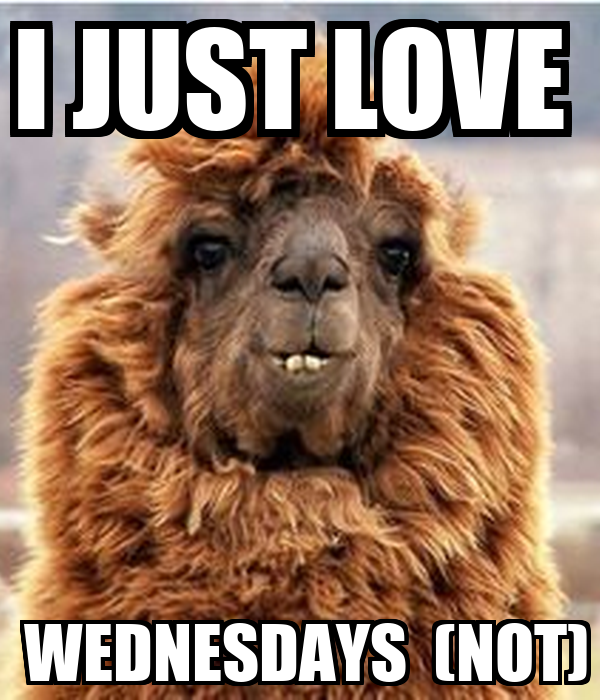 I JUST LOVE   WEDNESDAYS  (NOT)