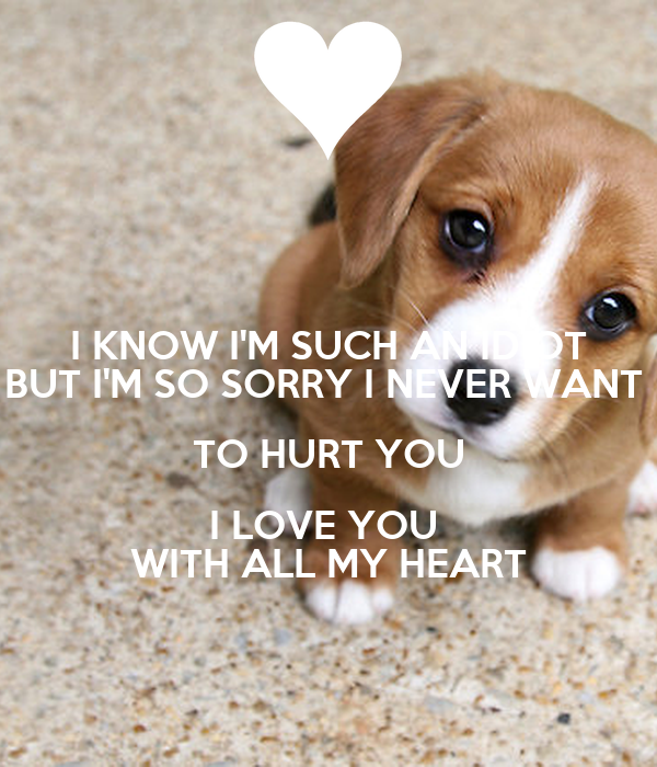 I Know Im Such An Idiot But Im So Sorry I Never Want To Hurt You I
