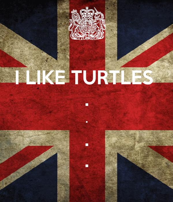 I LIKE TURTLES  . . . .