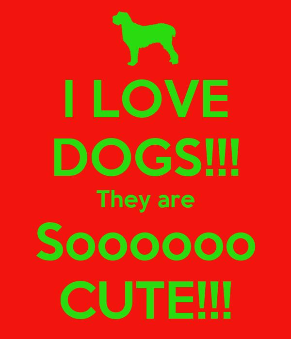 I LOVE DOGS!!! They are Soooooo CUTE!!!