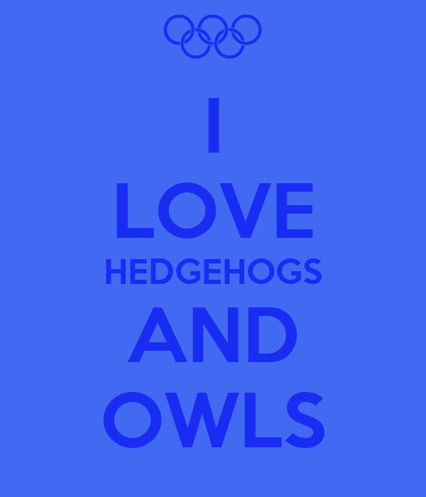 I LOVE HEDGEHOGS AND OWLS