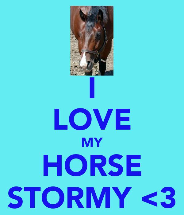 I LOVE MY HORSE STORMY <3