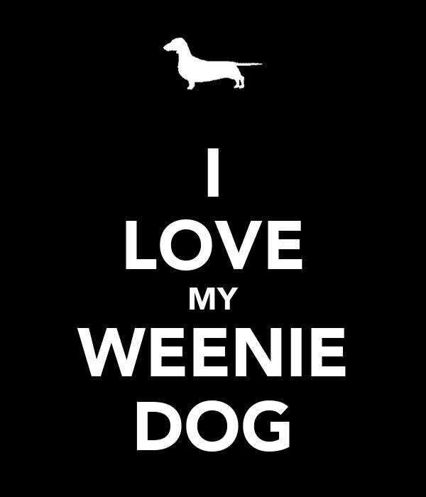 I LOVE MY WEENIE DOG