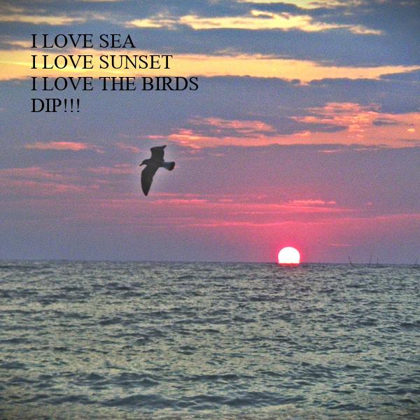 I LOVE SEA I LOVE SUNSET I LOVE THE BIRDS DIP!!!
