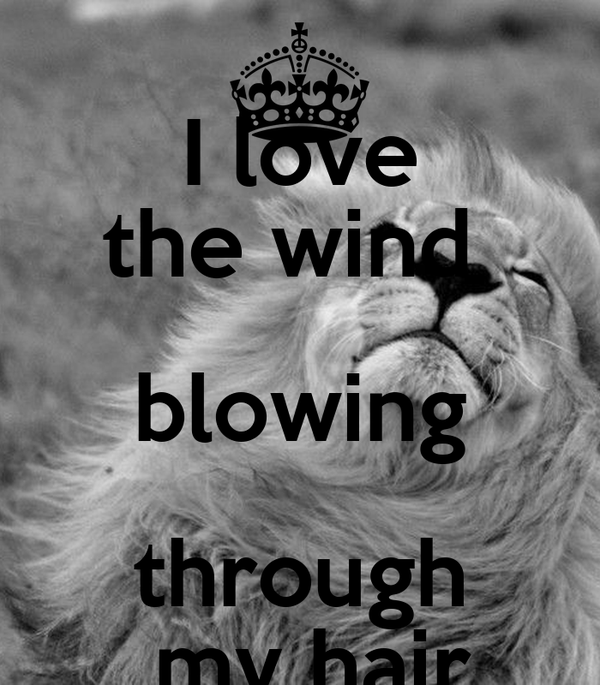 I love the wind  blowing through  my hair