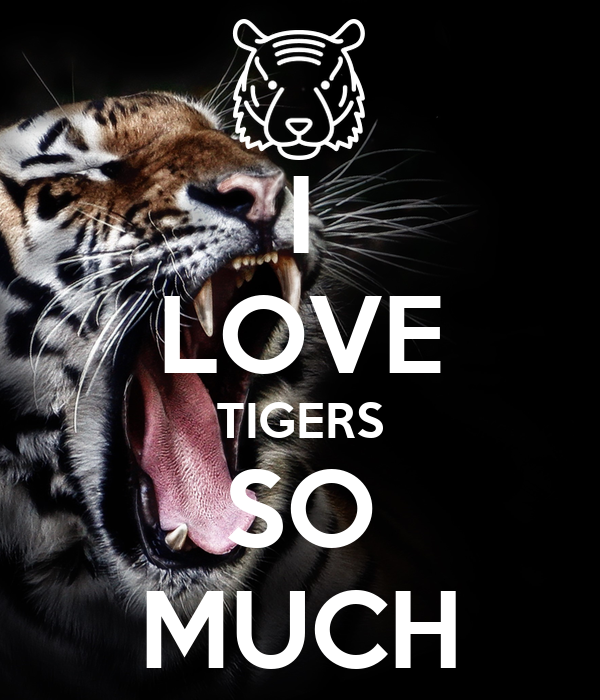 I LOVE TIGERS SO MUCH