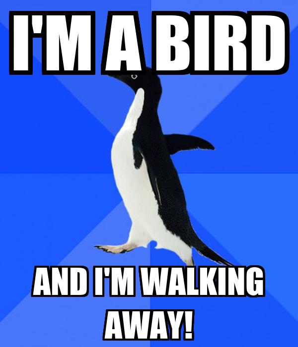 I'M A BIRD AND I'M WALKING AWAY!