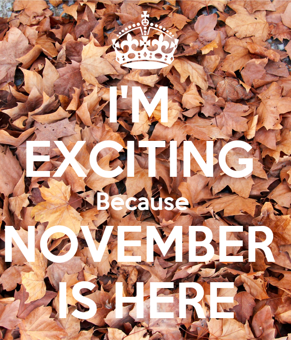 I'M  EXCITING  Because  NOVEMBER  IS HERE