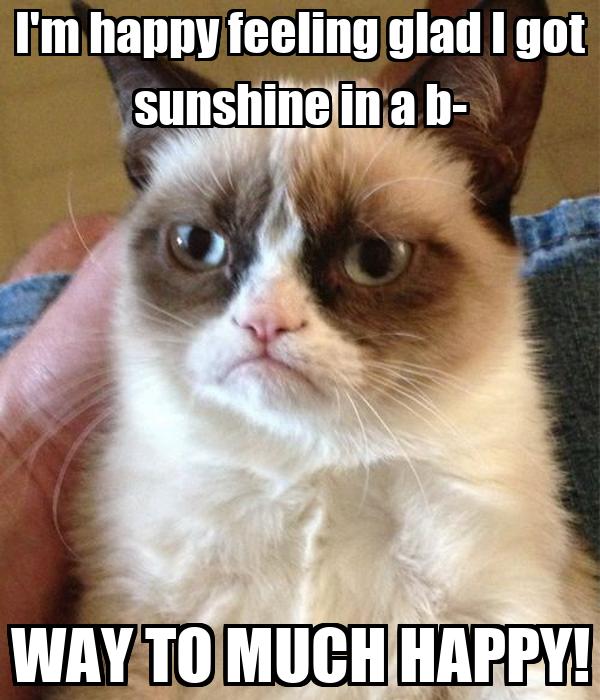 I'm happy feeling glad I got sunshine in a b- WAY TO MUCH HAPPY!