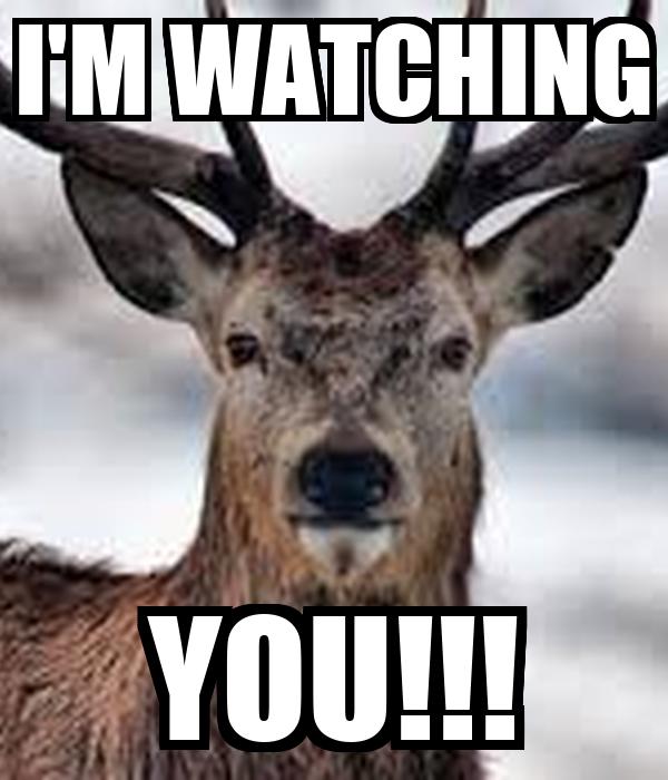 I'M WATCHING YOU!!!