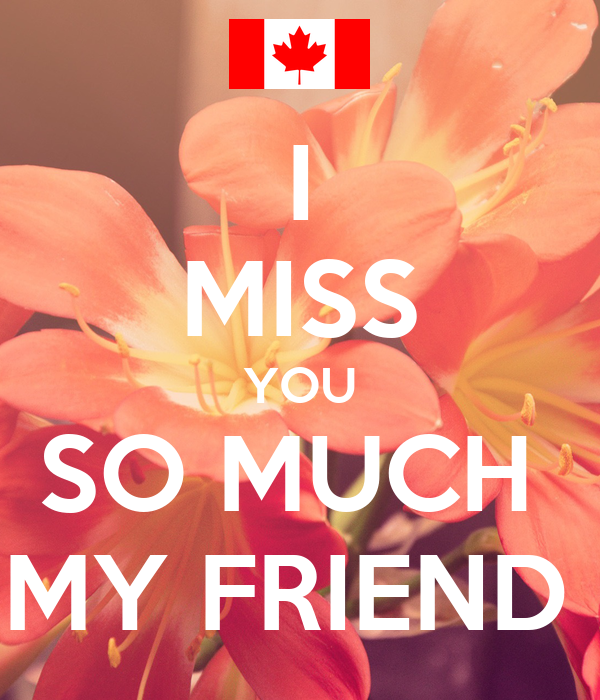 I Miss You So Much My Friend Poster Waliiihg Keep Calm O Matic