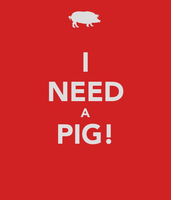 I NEED A PIG!