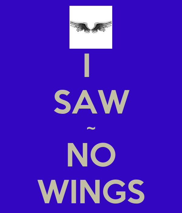 I  SAW ~ NO WINGS