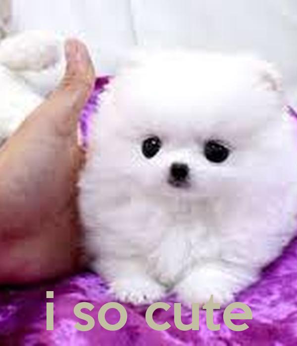 i so cute