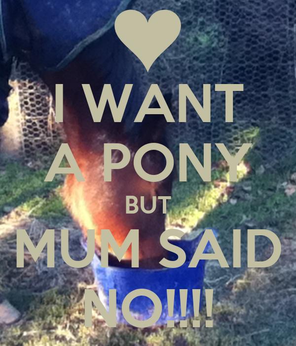 I WANT A PONY BUT MUM SAID NO!!!!