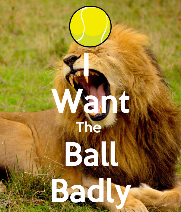 I  Want The  Ball Badly