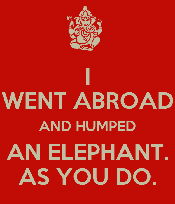 I WENT ABROAD AND HUMPED AN ELEPHANT. AS YOU DO.