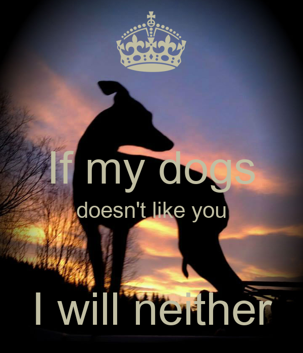 If my dogs doesn't like you       I will neither