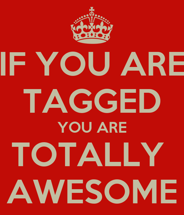 IF YOU ARE TAGGED YOU ARE TOTALLY  AWESOME