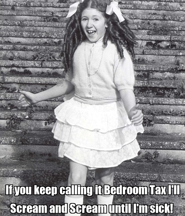 If you keep calling it Bedroom Tax I'll Scream and Scream until I'm sick!