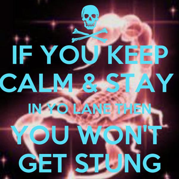 IF YOU KEEP CALM & STAY  IN YO LANE THEN YOU WON'T  GET STUNG