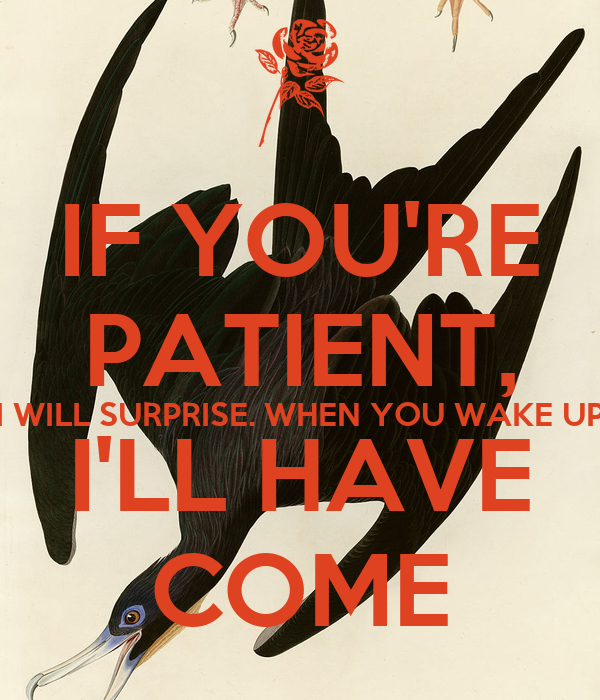 IF YOU'RE PATIENT, I WILL SURPRISE. WHEN YOU WAKE UP I'LL HAVE COME