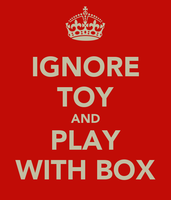 IGNORE TOY AND PLAY WITH BOX