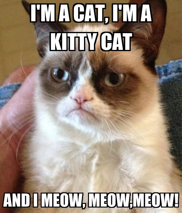 cat work pants