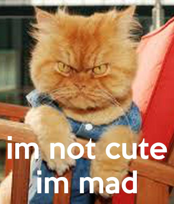 im not cute im mad