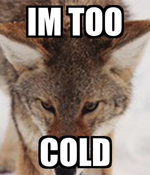 IM TOO COLD