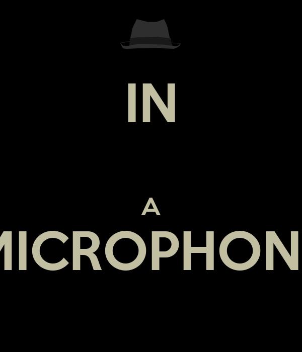 IN  A MICROPHONE