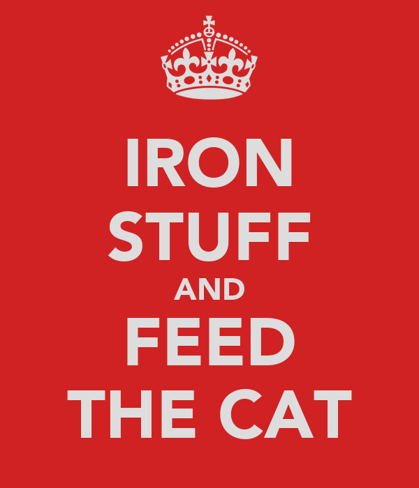 IRON STUFF AND FEED THE CAT