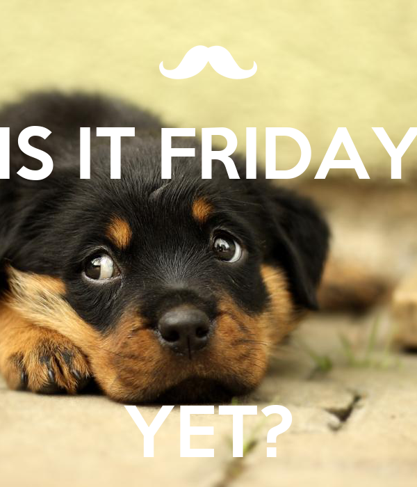 IS IT FRIDAY    YET?