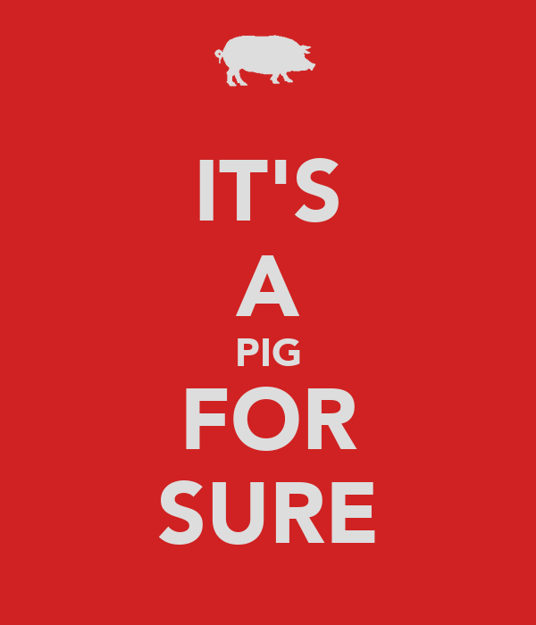 IT'S A PIG FOR SURE