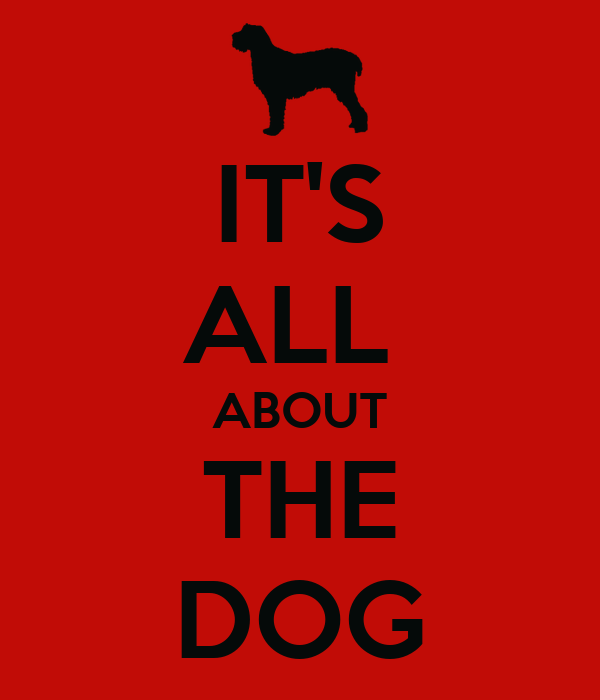 IT'S ALL  ABOUT THE DOG