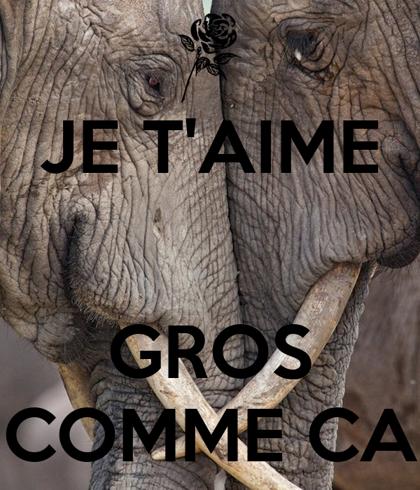 JE T'AIME   GROS COMME CA