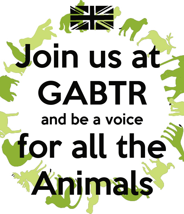 Join us at  GABTR and be a voice for all the Animals