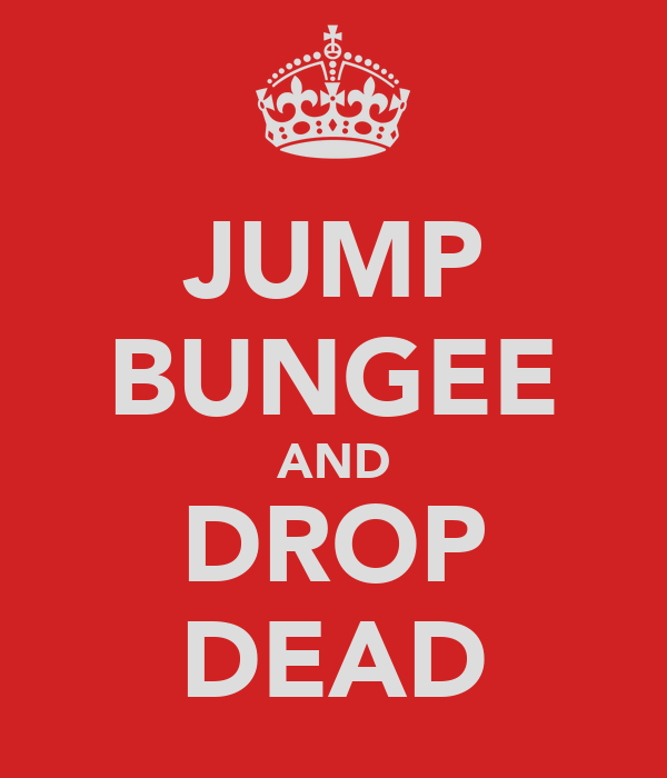JUMP BUNGEE AND DROP DEAD