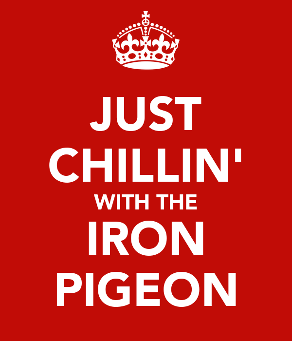 JUST CHILLIN' WITH THE IRON PIGEON