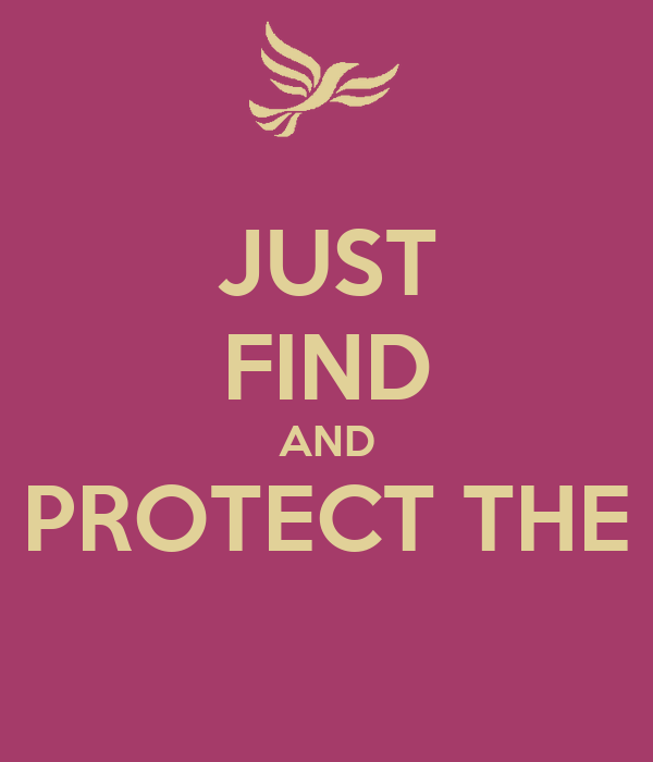 JUST FIND AND PROTECT THE