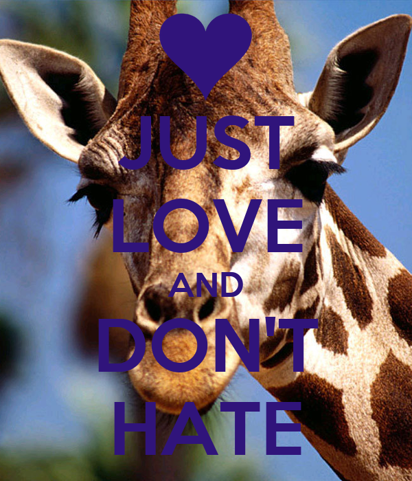JUST LOVE AND DON'T HATE