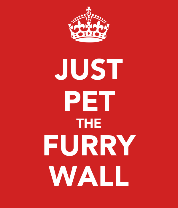 JUST PET THE FURRY WALL
